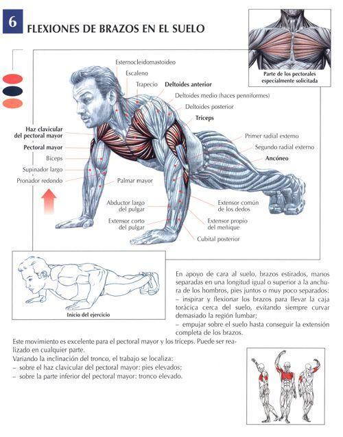 flexiones-de-brazos-en-el-suelo