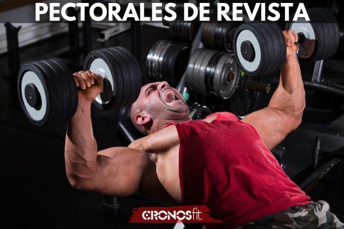 Pectorales de Revista Fitness