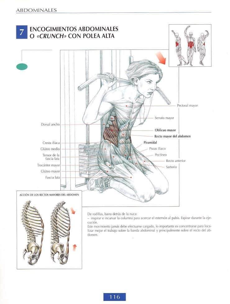 Encogimientos de abdominales o crunch con polea alta