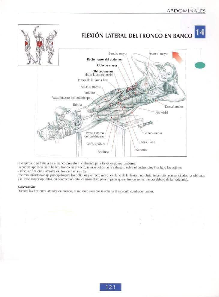 Flexión lateral del tronco en banco