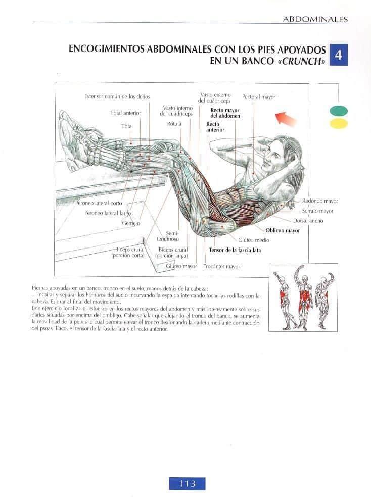 Encogimiento de abdominales con pies elevados en banco o crunch