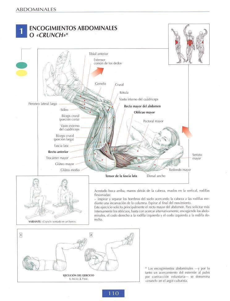 Encogimiento abdominales o crunch