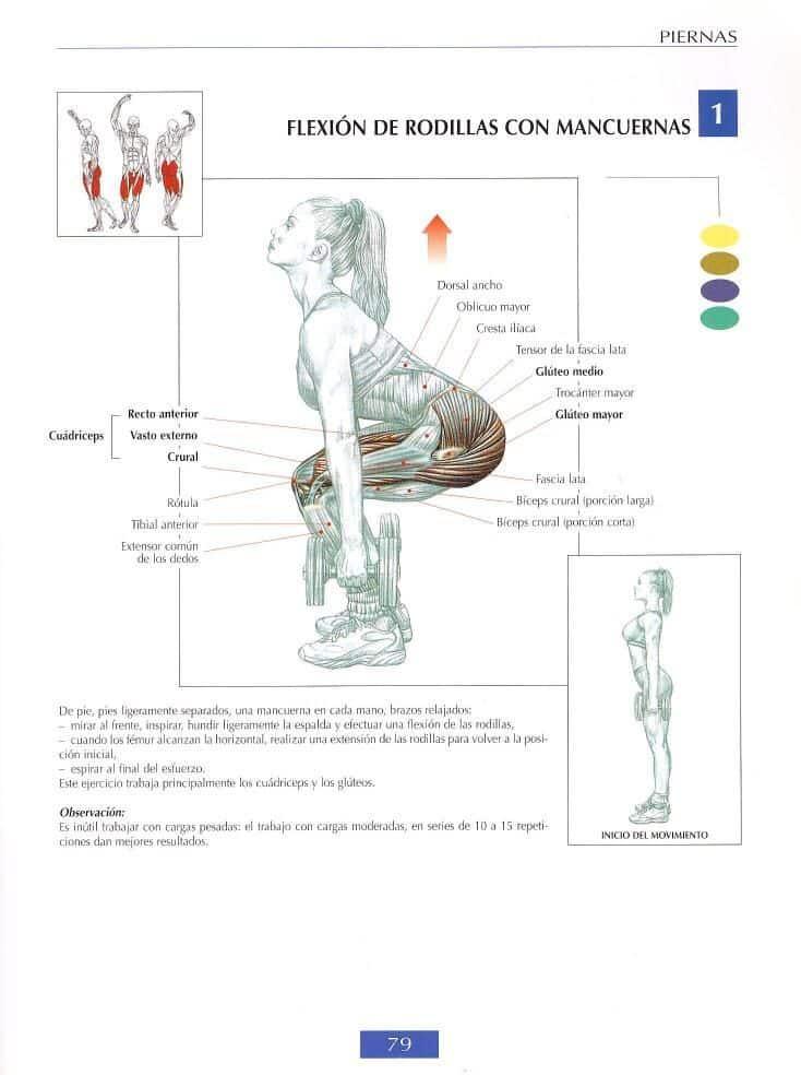 Flexión de rodillas con mancuernas o peso muerto con mancuernas