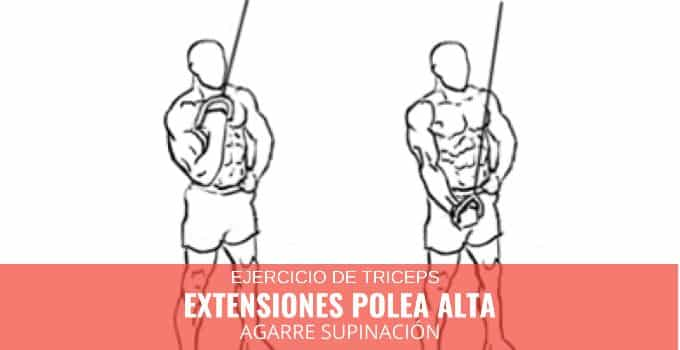 Extensiones Polea alta