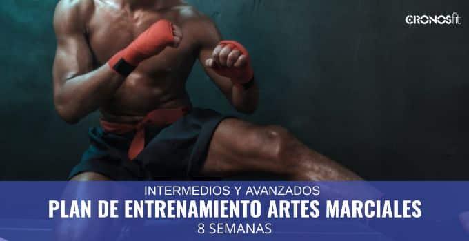 Plan de Entrenamiento Artes Marciales