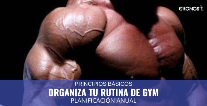 Organiza tu rutina de gym