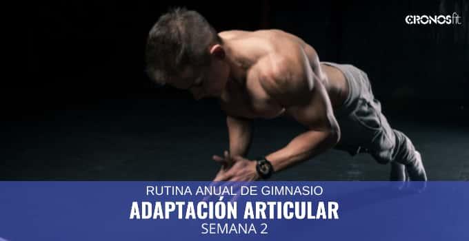 Adaptación Articular semana 2
