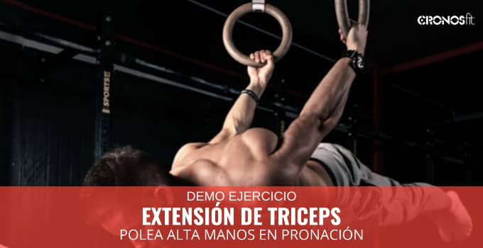 Extensión de tríceps en polea