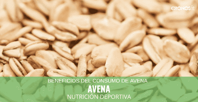 Beneficios del Consumo de Avena