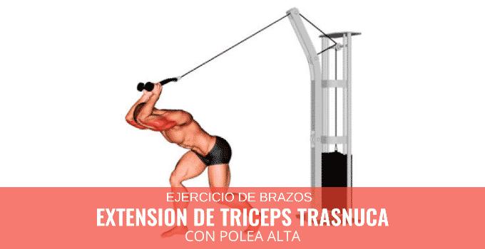 Extensión de tríceps tras nuca