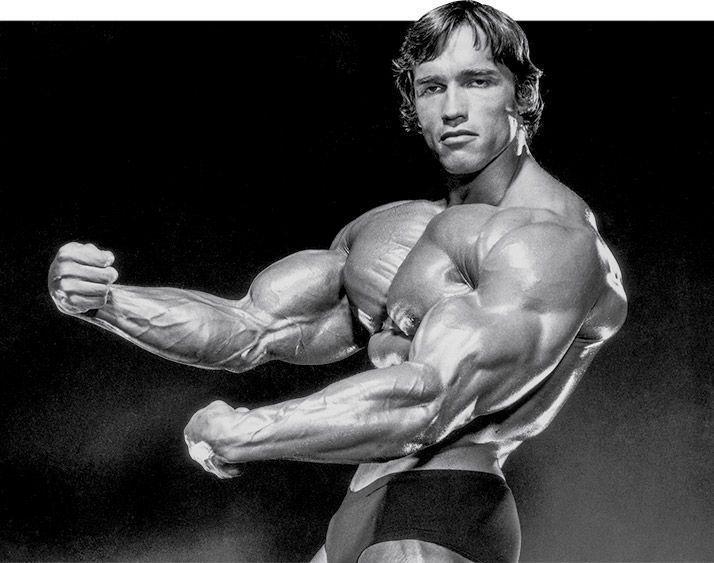 Arnold Schwarzenegger: Full Body Golden Six