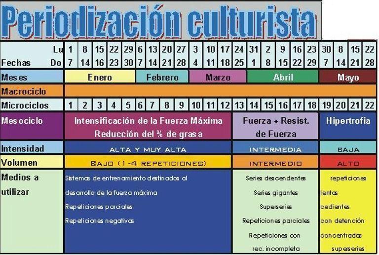 Ejemplo periodización entrenamiento culturista