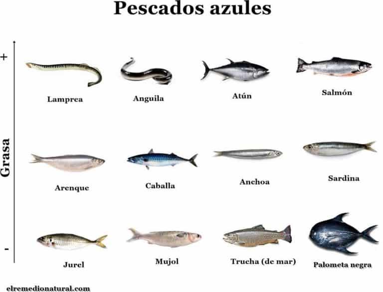 Listado de Pescado Azul